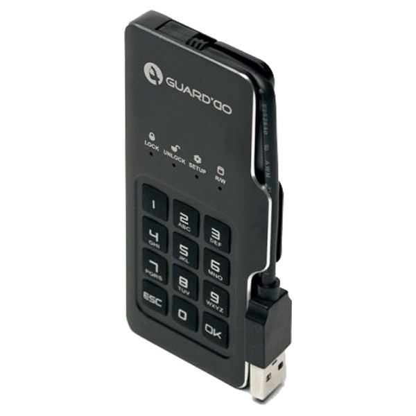 Мини-диск GuardDo SSD 1 ТБ защищенный флеш-накопитель с аппаратным шифрованием данных, пин-кодом